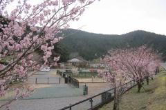 静岡県:はるの川音の郷