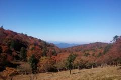【奈良県】みつえ青少年旅行村