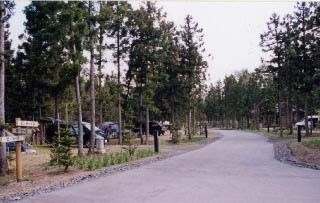 北欧の杜公園オートキャンプ場写真4