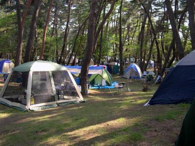 大洗町営 大洗キャンプ場写真1