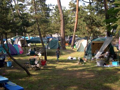 大洗町営 大洗キャンプ場写真3
