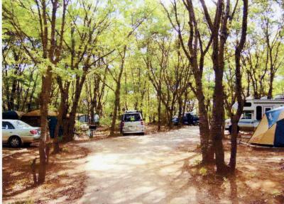 ルーラル吉瀬・フォンテーヌの森キャンプ場写真4