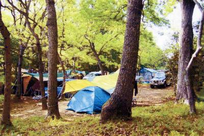 ルーラル吉瀬・フォンテーヌの森キャンプ場写真5