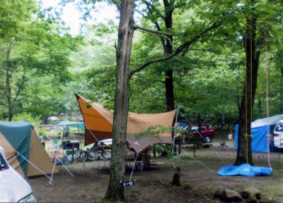 キャンプラビット写真4