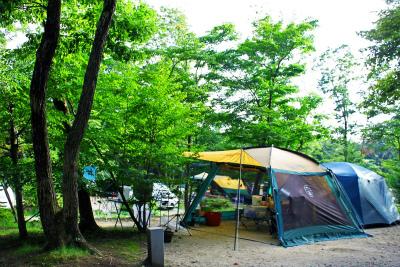 メープル那須高原キャンプグランド写真2