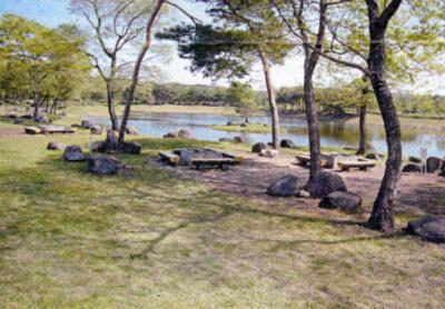 那須塩原市鳥野目河川公園オートキャンプ場写真6