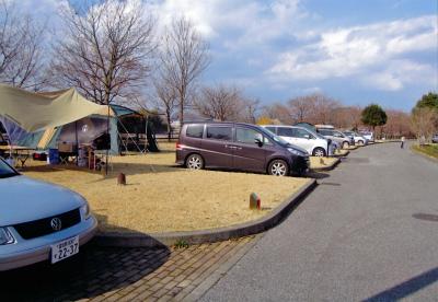 出会いの森総合公園オートキャンプ場写真1