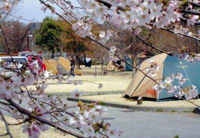 出会いの森総合公園オートキャンプ場写真2