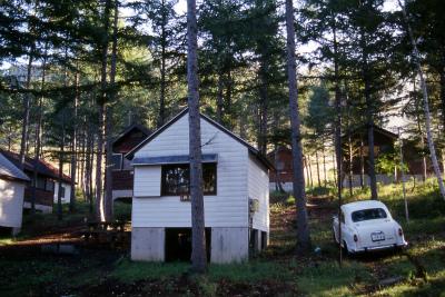 水上宝台樹やすらぎの森キャンプ場写真3