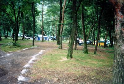 ひするまキャンプ場写真1