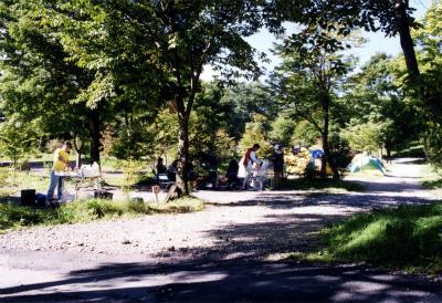 わらび平森林公園キャンプ場写真1