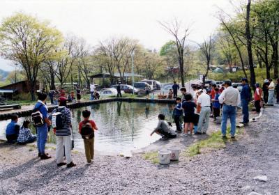 わらび平森林公園キャンプ場写真2