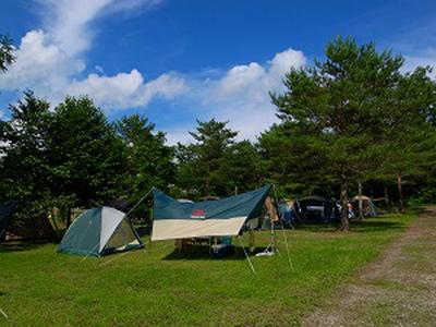 軽井沢オートキャンプ場 クリオフィールド写真1