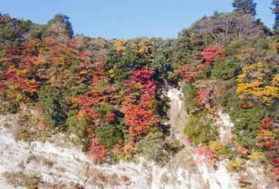 亀山湖オートキャンプ場写真4