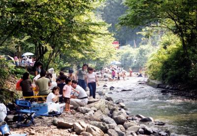 アメリカキャンプ村写真2