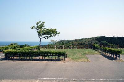 長岡市和島オートキャンプ場写真6