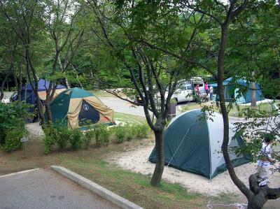 医王の里オートキャンプ場写真5