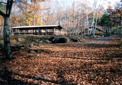 みずがき山森の農園キャンプ場写真3