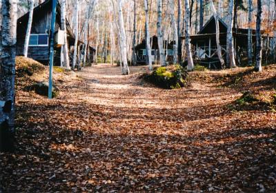 みずがき山森の農園キャンプ場写真5