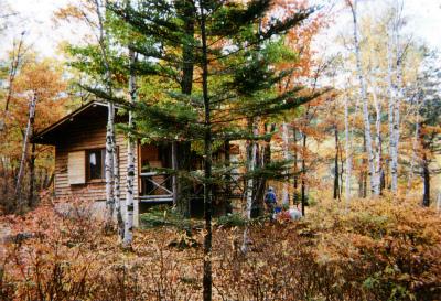 廻り目平ふれあいの森キャンプ場写真4