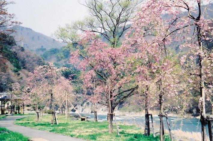 鬼怒川温泉オートキャンプ場写真7