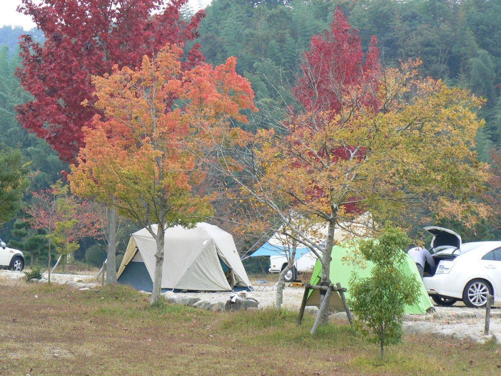 OKオートキャンプ場写真1