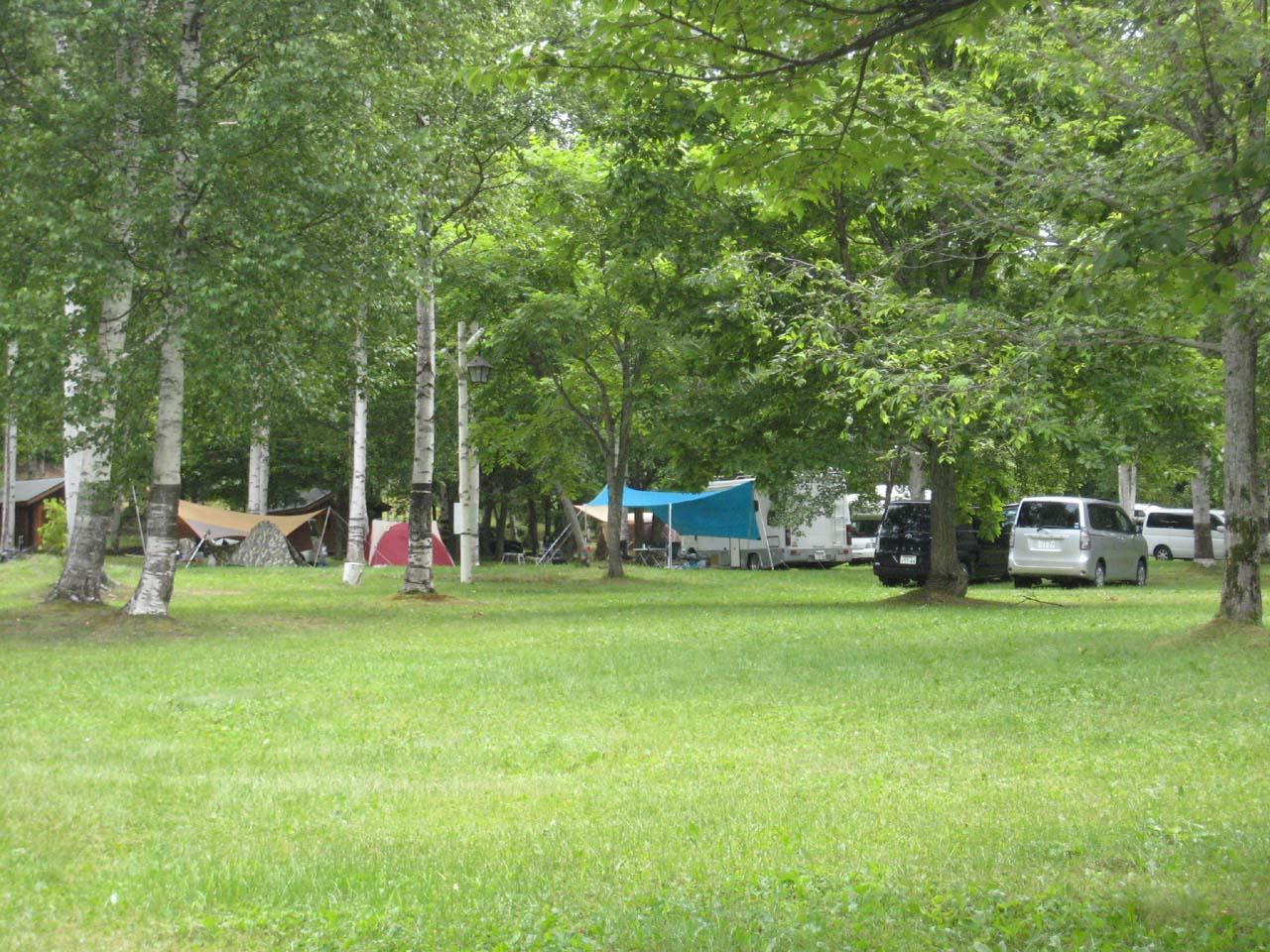 岩尾内湖白樺キャンプ場写真3