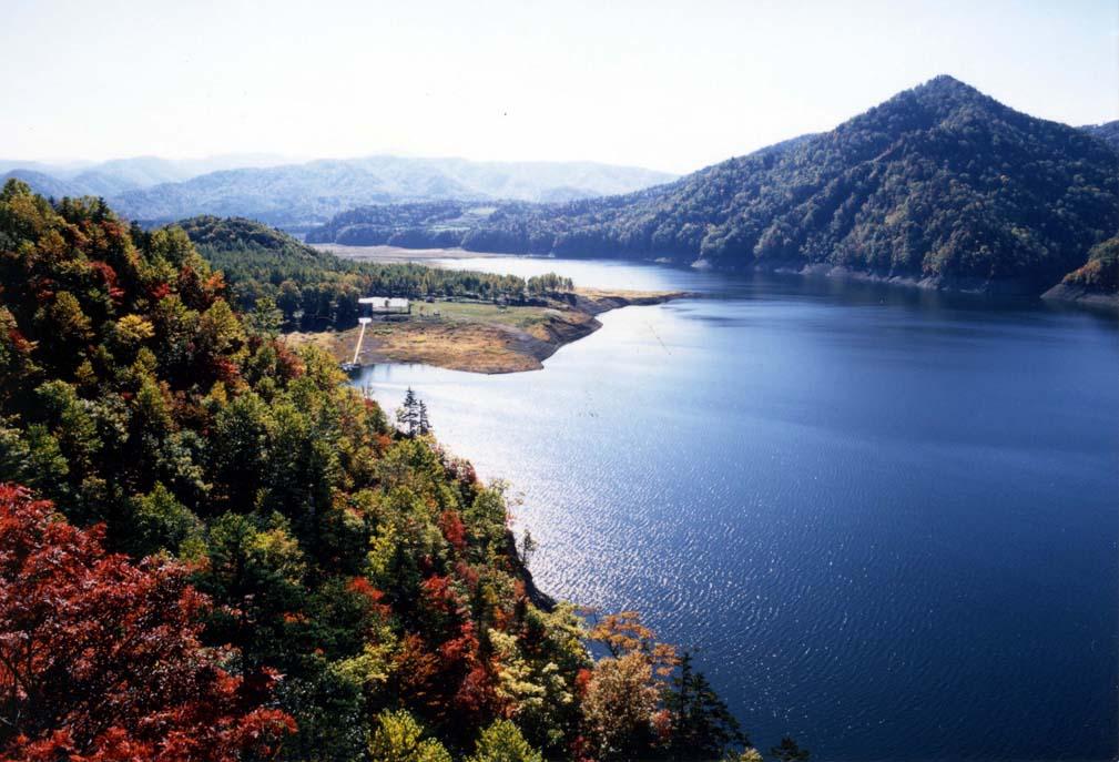 岩尾内湖白樺キャンプ場写真4