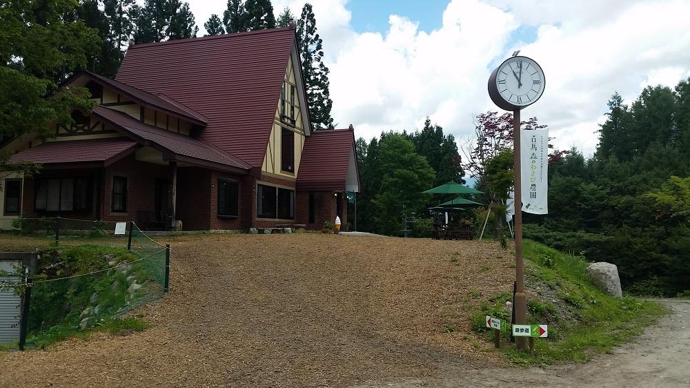 白馬森のわさび農園オートキャンプ場写真6