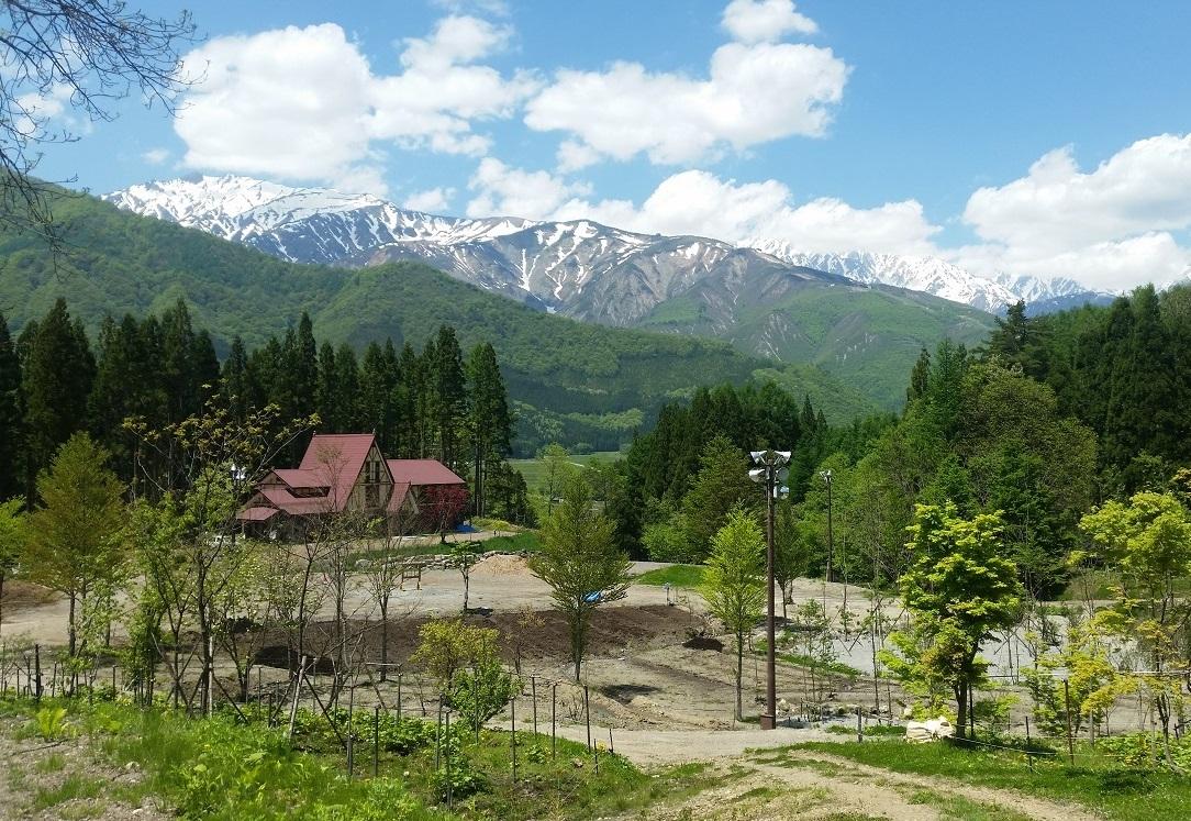 白馬森のわさび農園オートキャンプ場写真1