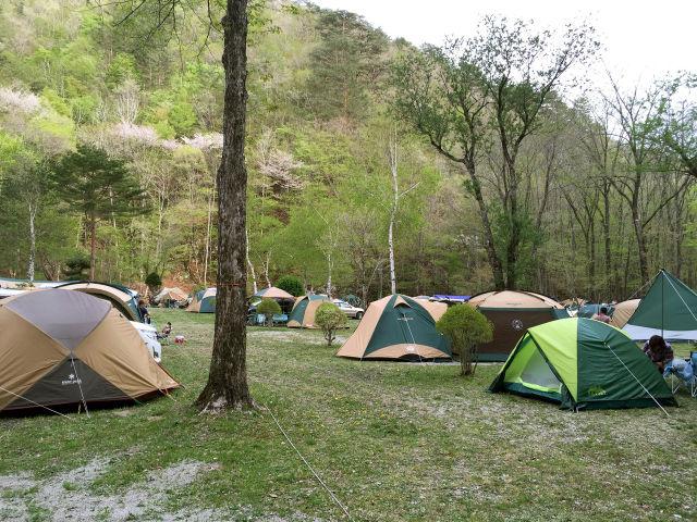 ナラ入沢渓流釣りキャンプ場写真7