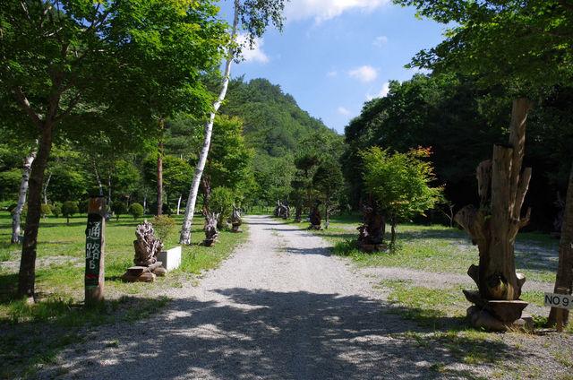 ナラ入沢渓流釣りキャンプ場写真9