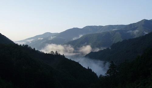東部森林公園ほうれん坊の森キャンプ場写真3