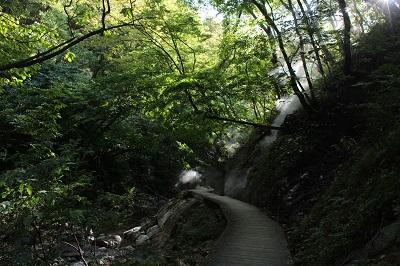 吹上高原キャンプ場写真2