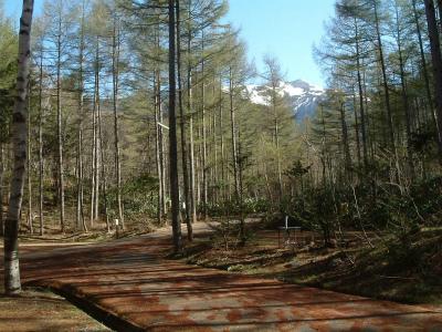 AIMIX自然村南乗鞍オートキャンプ場写真4