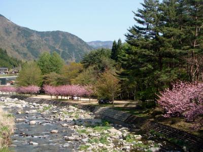 中川原キャンプ場写真5