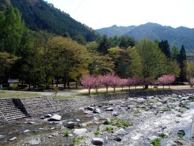 中川原キャンプ場写真6