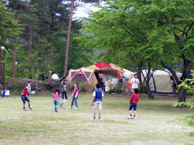 福岡ローマン渓谷オートキャンプ場写真2