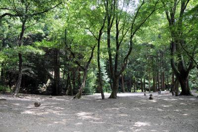 アウトドア・ベース犬山キャンプ場写真2