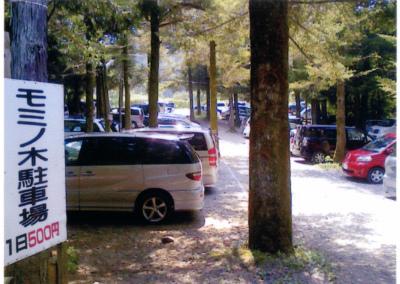 八曽モミの木キャンプ場写真5