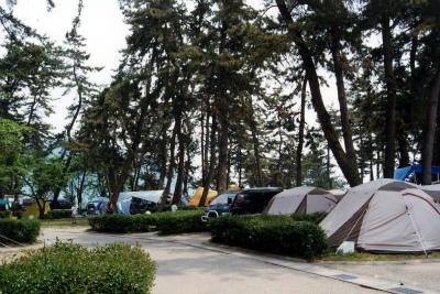 マキノサニービーチ知内浜オートキャンプ場写真2