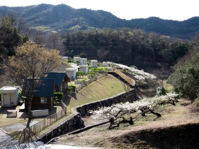小豆島ふるさと村キャンプ場写真2