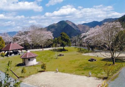 大洲家族旅行村オートキャンプ場写真2