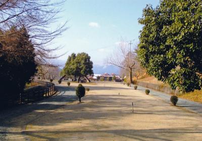 大洲家族旅行村オートキャンプ場写真4