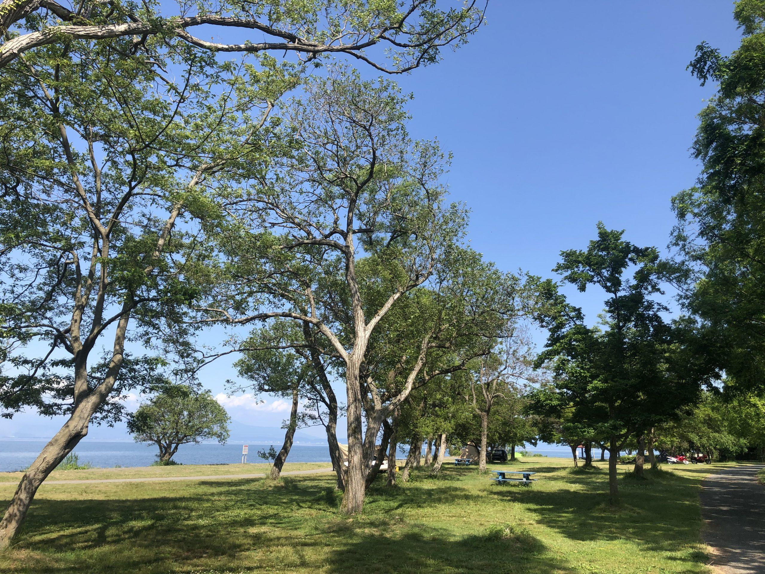 六ツ矢崎浜オートキャンプ場写真4