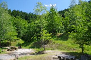ふるさと村自然公園 せいなの森キャンプ場写真2
