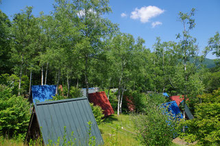 ふるさと村自然公園 せいなの森キャンプ場写真1