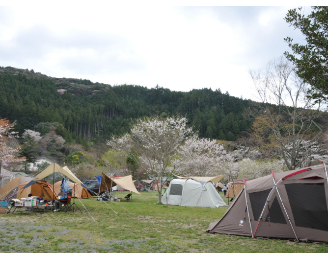 ならここの里居尻キャンプ場写真1