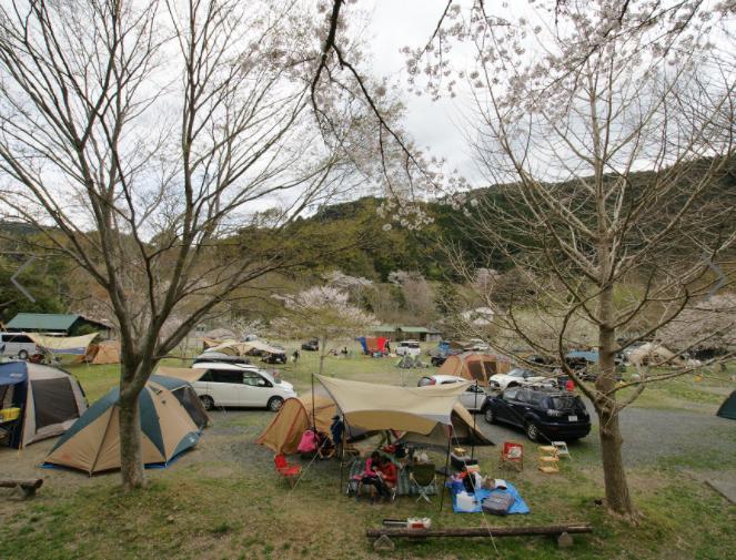 ならここの里居尻キャンプ場写真3