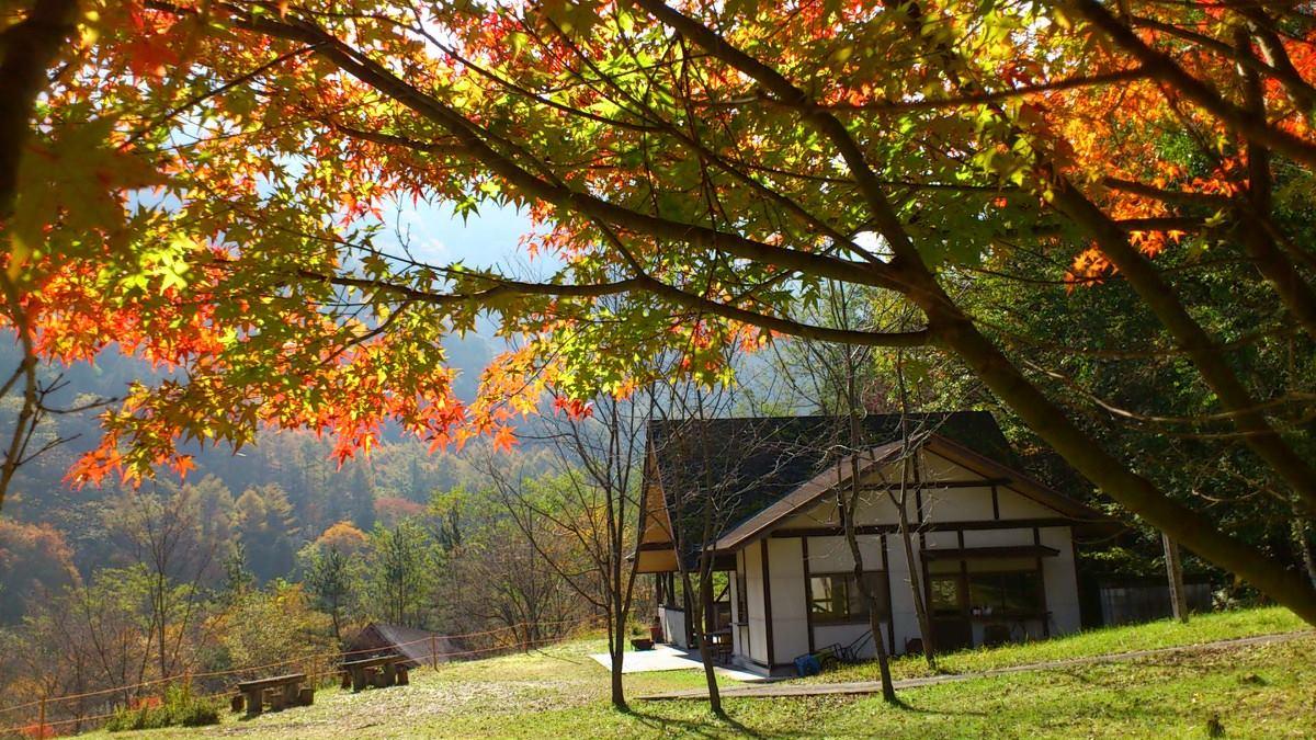 芦安キャンプサイトNo2写真